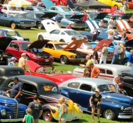 CarShowField